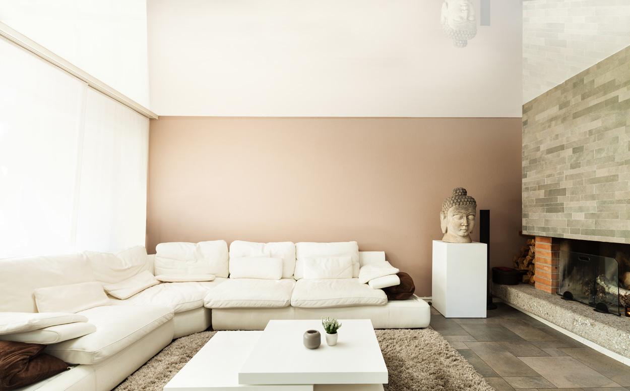 Plameco plafonds prijs m2